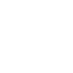 Car sales icon